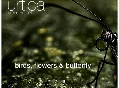 Urtika – birds, flowers & butterfly